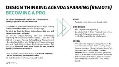 Einleitung zum Agenda Sparring